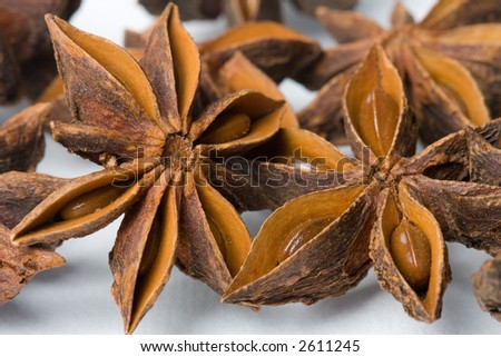 Bunch of anise