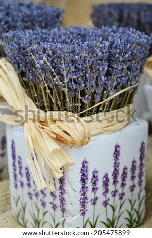 Bunch of beautiful blue lavender flowers