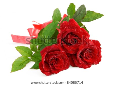 Bunch of beautiful fresh red roses with drops isolated on white - stock photo