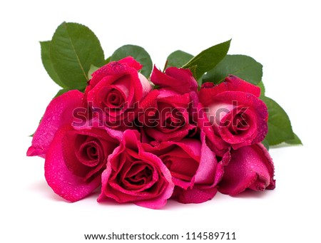 bunch of beautiful roses with water drops over white