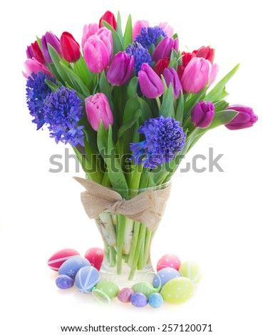 bunch of blue hyacinth and red, pink and purple tulip flowers close up  isolated on white background - stock photo