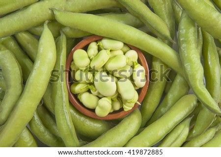 bunch of broad beans and pods with bowl - stock photo