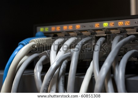 bunch of cables inserted in the network equipment - stock photo