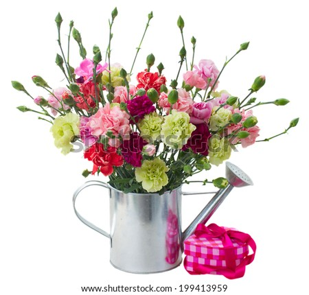 bunch of carnation flowers with pink gift box isolated on white background - stock photo