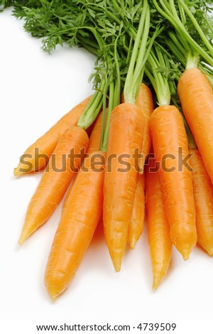 Bunch of carrot isolated on white