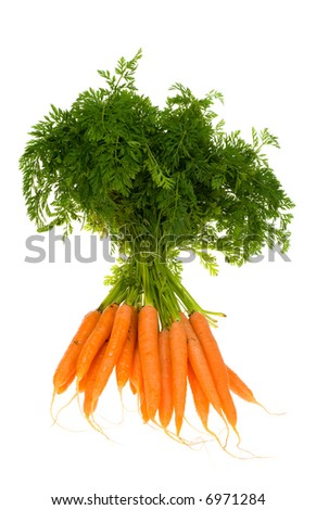 Bunch of carrots isolated on a white background - stock photo