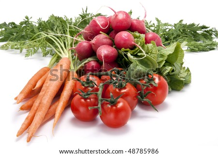 Bunch of carrots with stems attached, a bundle of radishes, and vine tomatoes on a white background. - stock photo