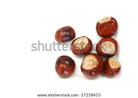bunch of chestnuts  isolated on a white background