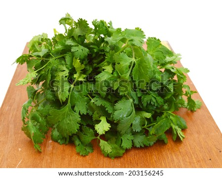 Bunch of Cilantro leaves on wooden board on isolated white background  - stock photo