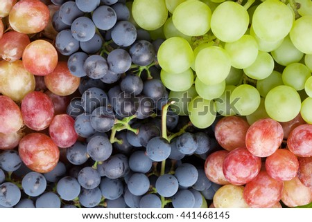 Bunch of colorful grapes closeup
