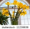Bunch Of Daffodils In A Glass Vase In Front Of A Window - stock photo