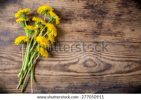 Bunch of dandelions on brown wood texture with empty space for text - stock photo