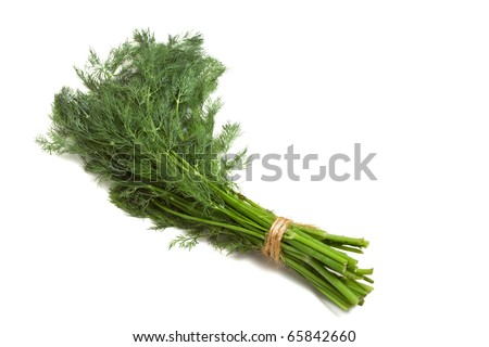 Bunch of Dill from low perspective isolated on white background.