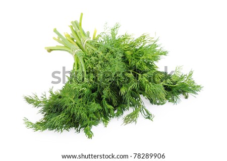 Bunch of dill isolated on the white background - stock photo
