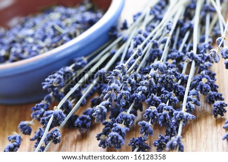 Bunch of dried lavender herb and lavender flowers in a bowl - stock photo