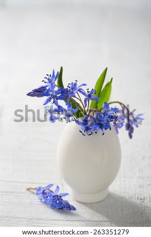 Bunch of  early spring   flowers ( Scilla siberica) in egg shell on the white wooden plank. Shallow depth of field, focus on near flowers. Easter decor - stock photo