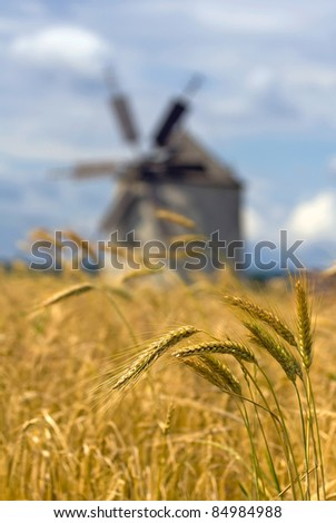 Bunch of ears of wheat with a windmill in the background - shallow depth of field - stock photo
