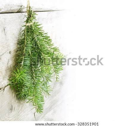 bunch of fir branches hanging as a Christmas decoration on a light wooden wall, background with copy space faded to white, horizontal or vertical design - stock photo
