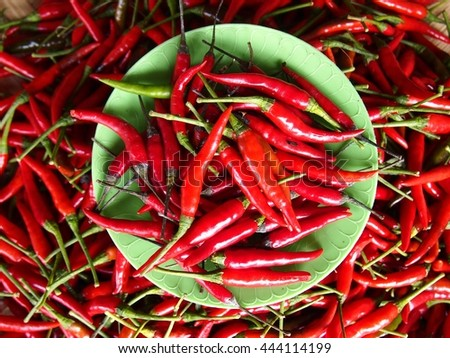 Bunch of fresh and raw red chili