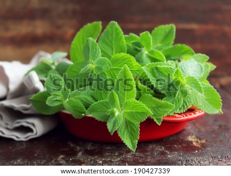 Bunch of fresh aroma mint leaves in a bowl - stock photo