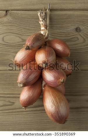 Bunch of fresh brown french shallots hanging on the wall
