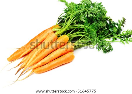 Bunch of fresh carrots with leaves  on white background - stock photo