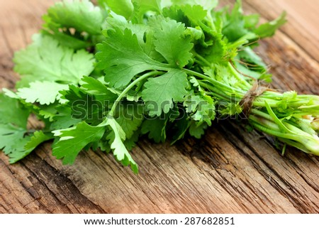 Bunch of fresh coriander on a wooden table - stock photo