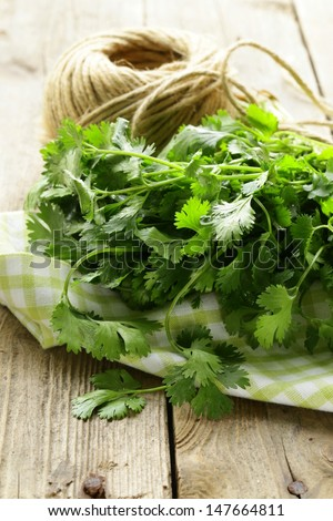 bunch of fresh green coriander (cilantro) on a wooden table - stock photo