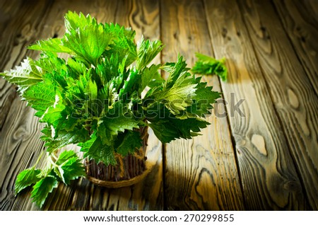 Bunch of fresh green nettle on wooden background. Copy space - stock photo