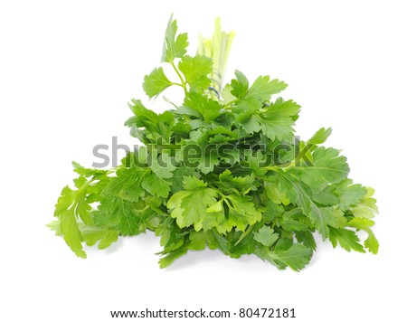 Bunch of fresh green parsley isolated on white background - stock photo