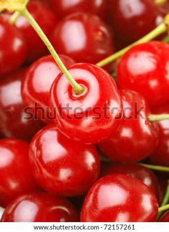 bunch of fresh, juicy, ripe cherries - stock photo