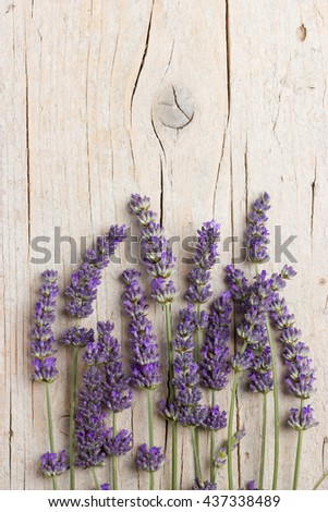 Bunch of fresh lavender flowers on wooden background