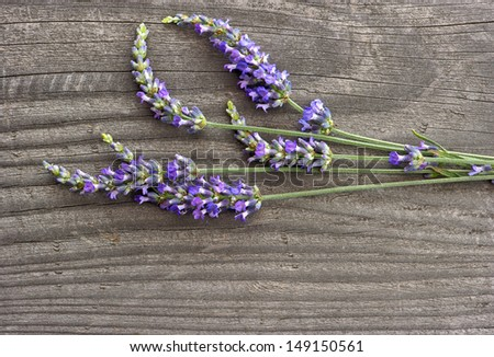 bunch of fresh lavender flowers over wooden background - stock photo