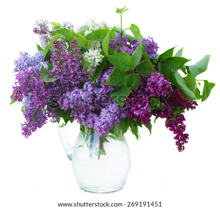 Bunch of fresh lilac flowers in glass vase close up isolated on white background - stock photo