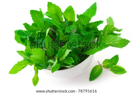 Bunch of fresh mint in white bowl isolated on white background. - stock photo