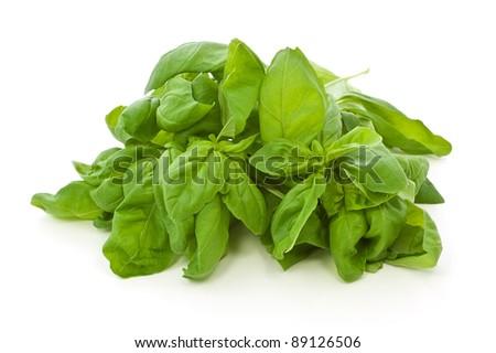 Bunch of fresh, organic sweet basil; isolated on white background - stock photo
