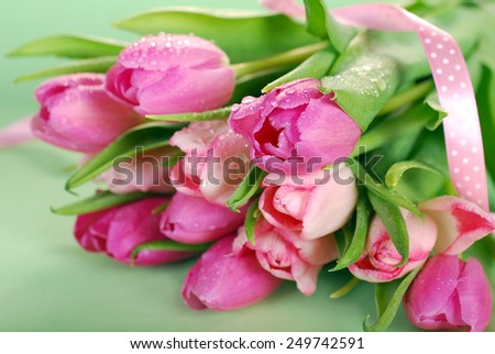 bunch of fresh pink tulips with water drops lying on green background  - stock photo