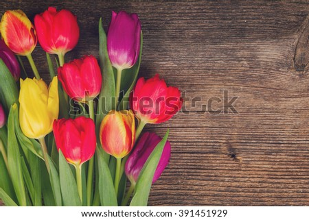 bunch of fresh purple, yellow and red  tulips close up on wooden background, retro toned - stock photo
