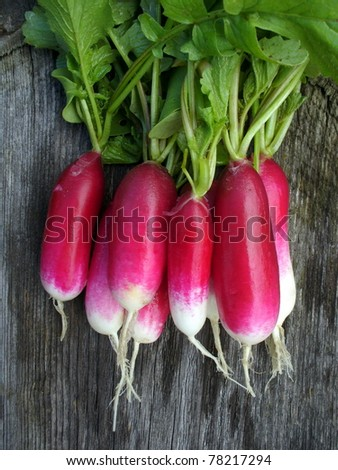 bunch of fresh radishes on a wooden background - stock photo