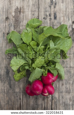 bunch of fresh radishes on wooden board - stock photo