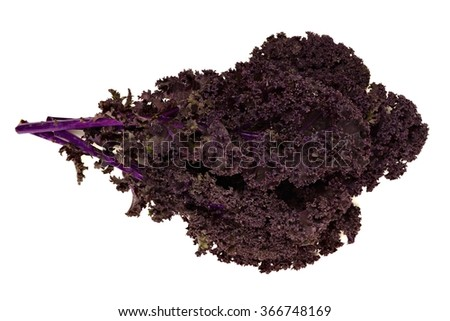 Bunch of fresh red kale over a white background - stock photo