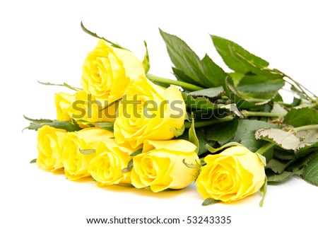 bunch of fresh roses isolated on white - stock photo