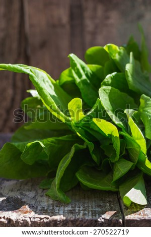 bunch of fresh spinach on textured wooden background - stock photo