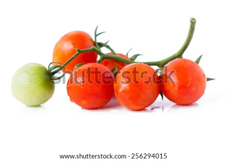 Bunch of fresh tomatoes with water drops. Isolated on white background. - stock photo