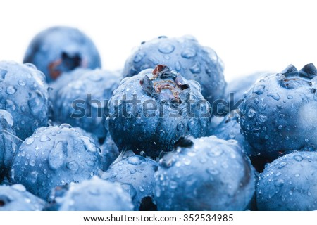 Bunch of freshly picked blueberries - close up shot - stock photo