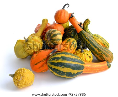 Bunch of gourds of different color and shape - stock photo
