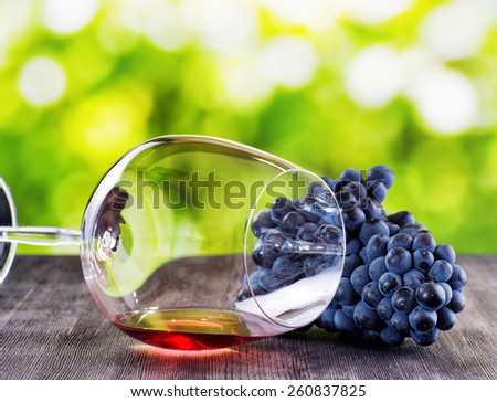 Bunch of grapes and glass of red wine lying on a black wooden table on nature background. - stock photo