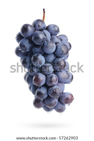 Bunch of grapes with water drops, isolated - stock photo
