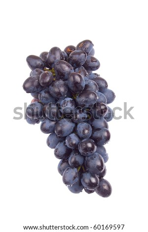 Bunch of grapes with water drops, isolated
