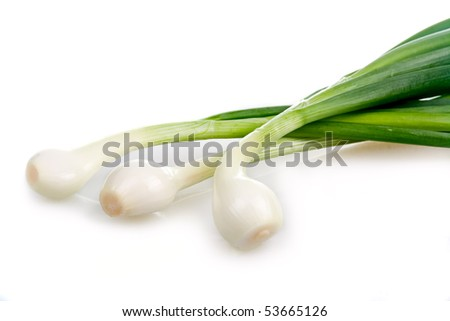 Bunch of green onion vegetables isolated on white background - stock photo